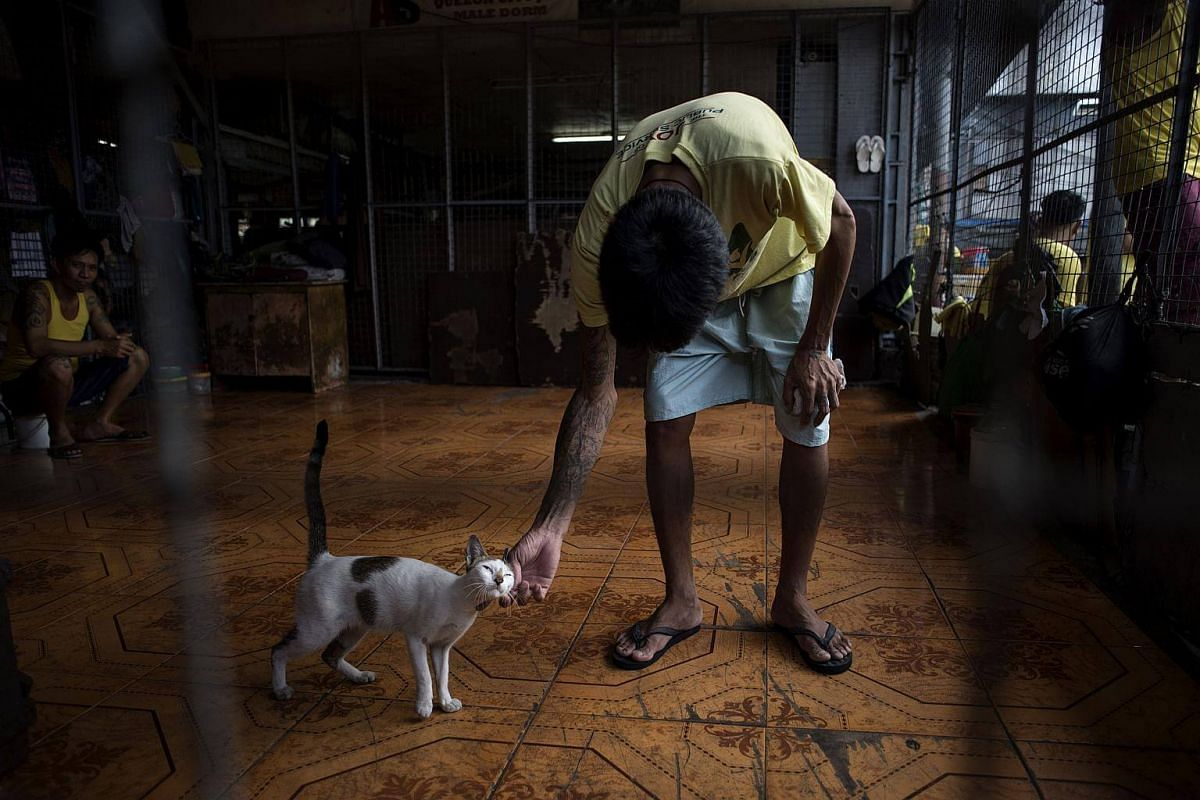 Inmate playing with a cat inside the Quezon City Jail in Manila on July 11, 2017.