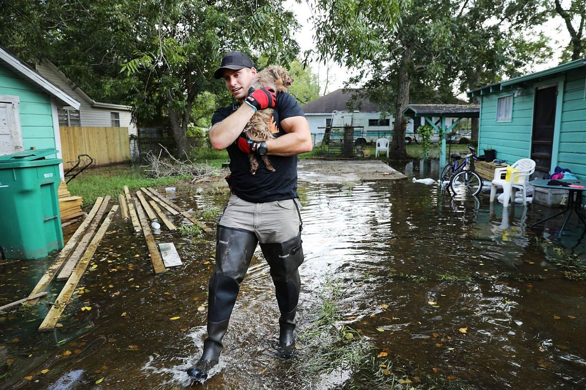 Matt Murray, a volunteer with an animal rescue organization, carries a small dog he found abandoned beside a flooded home on September 5, 2017 in Orange, Texas. PHOTO: GETTY IMAGES/AFP