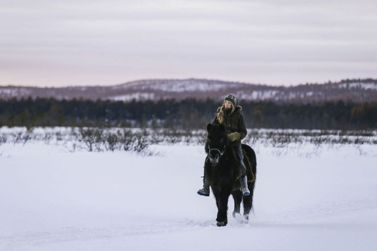 Tinja Myllykangas taking a horse out for a ride in the wilderness.