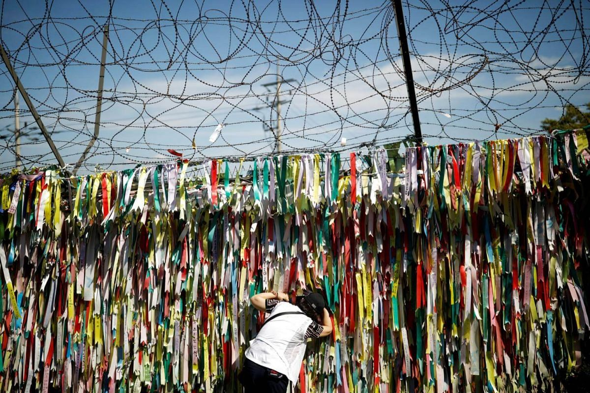 A woman peeps through a barbed-wire fence decorated with ribbons bearing messages wishing for the unification between the two Koreas near the demilitarised zone separating the two Koreas in Paju, South Korea, on Sept 15, 2017.