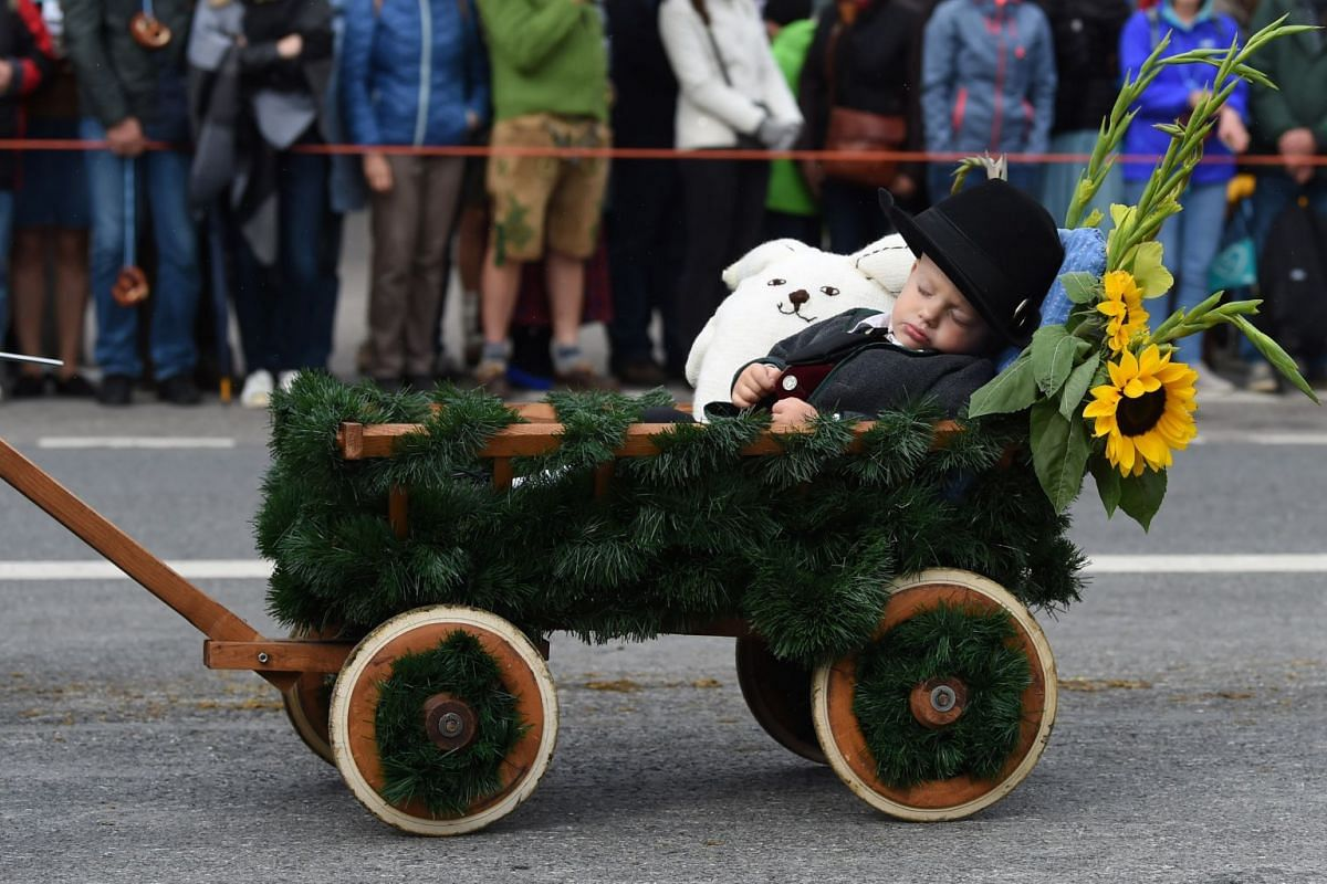 Little Ben sleeps in his trolley during the traditional costume and riflemen parade during the second day of the 184th Oktoberfest beer festival in Munich, southern Germany, on September 17, 2017. PHOTO: AFP