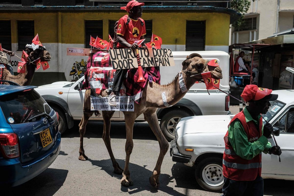 Peter Mwaniki, who normally offers fun camel rides at a park, rides on his male camel, Sherrif, during a voluntary campaign to support Kenya's president and his Jubilee Party in Nairobi on Sept 18, 2017. PHOTO: AFP