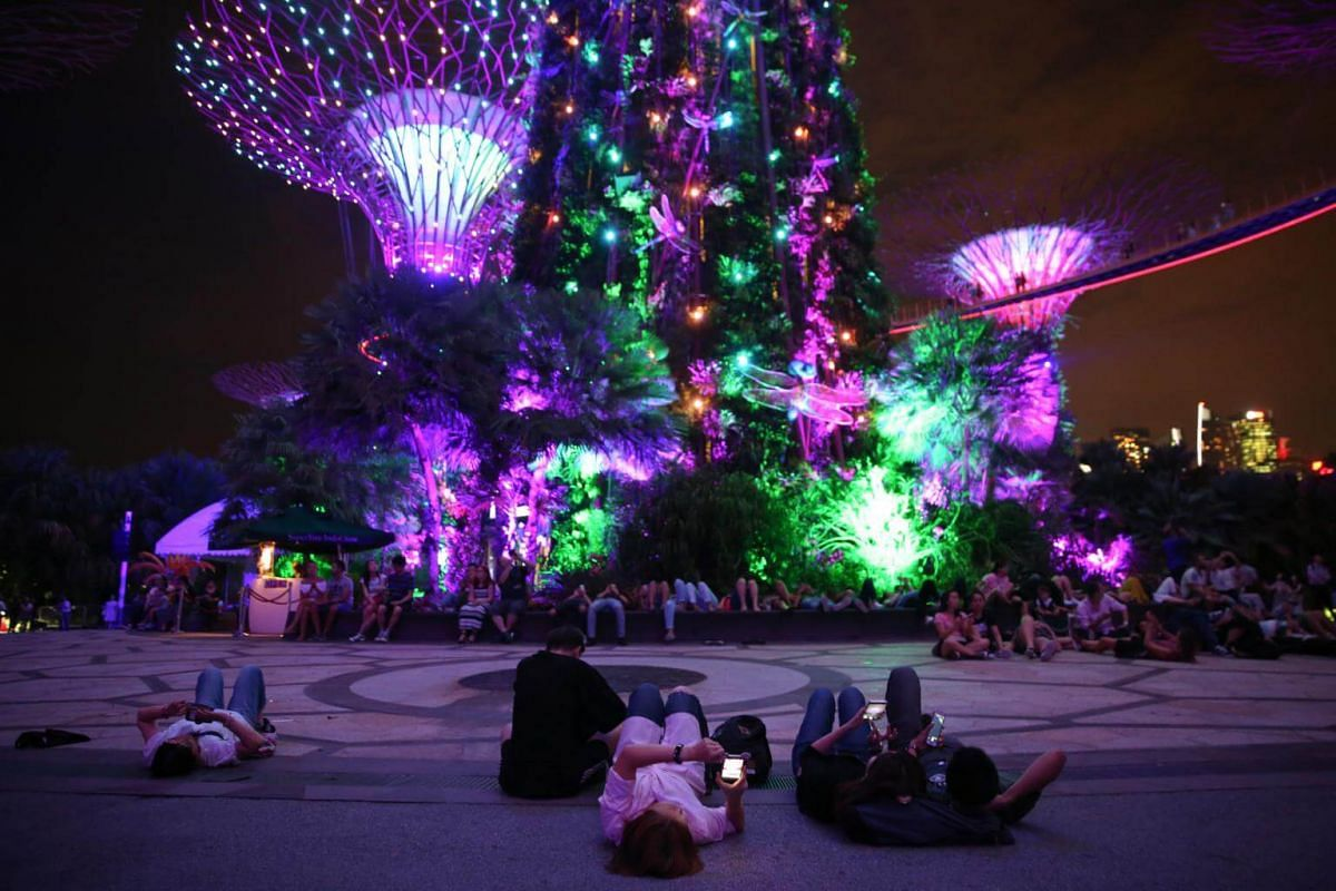 Visitors at Gardens By The Bay taking in the dazzling views.