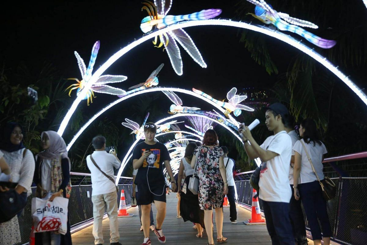 One of the installations at the Gardens features over 100 dragonfly-shaped lanterns adorning the Supertrees.