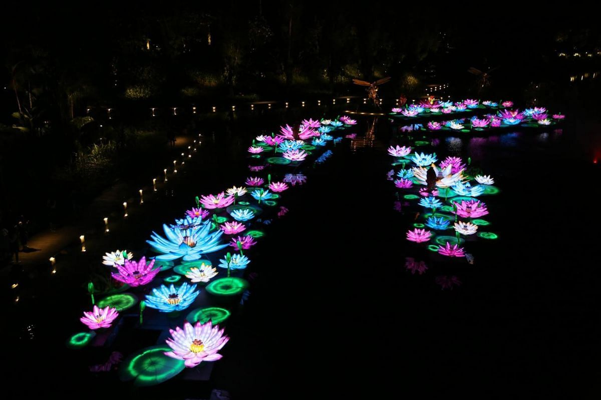 Splendour of Blooms features some 250 waterlily-shaped lanterns floating on the lake.