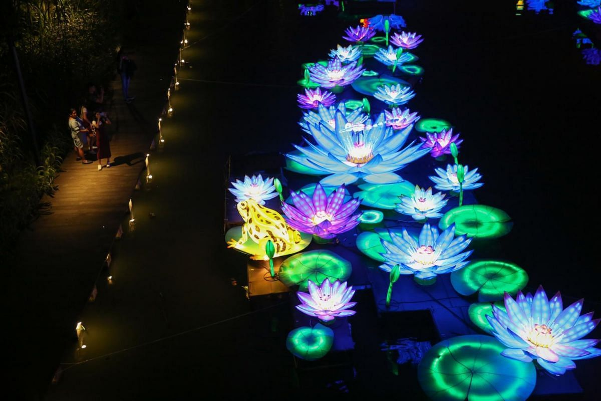 Splendour of Blooms display, which comprises some 250 waterlily-shaped lanterns, livens up the lake.