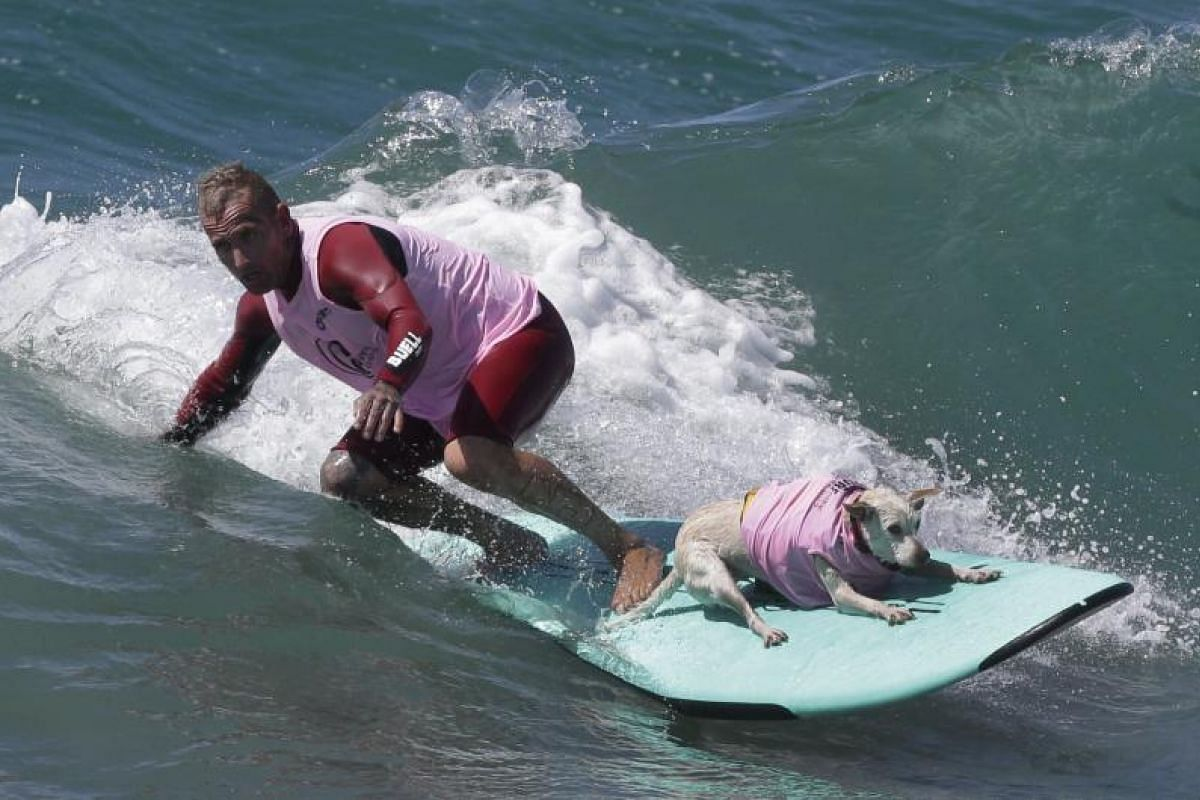 A man and his dog compete in the Tandem category.
