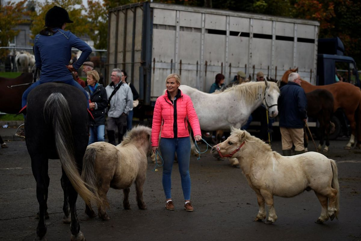 People attend an annual horse fair in Ballinasloe, Ireland, October 1, 2017. PHOTO: REUTERS