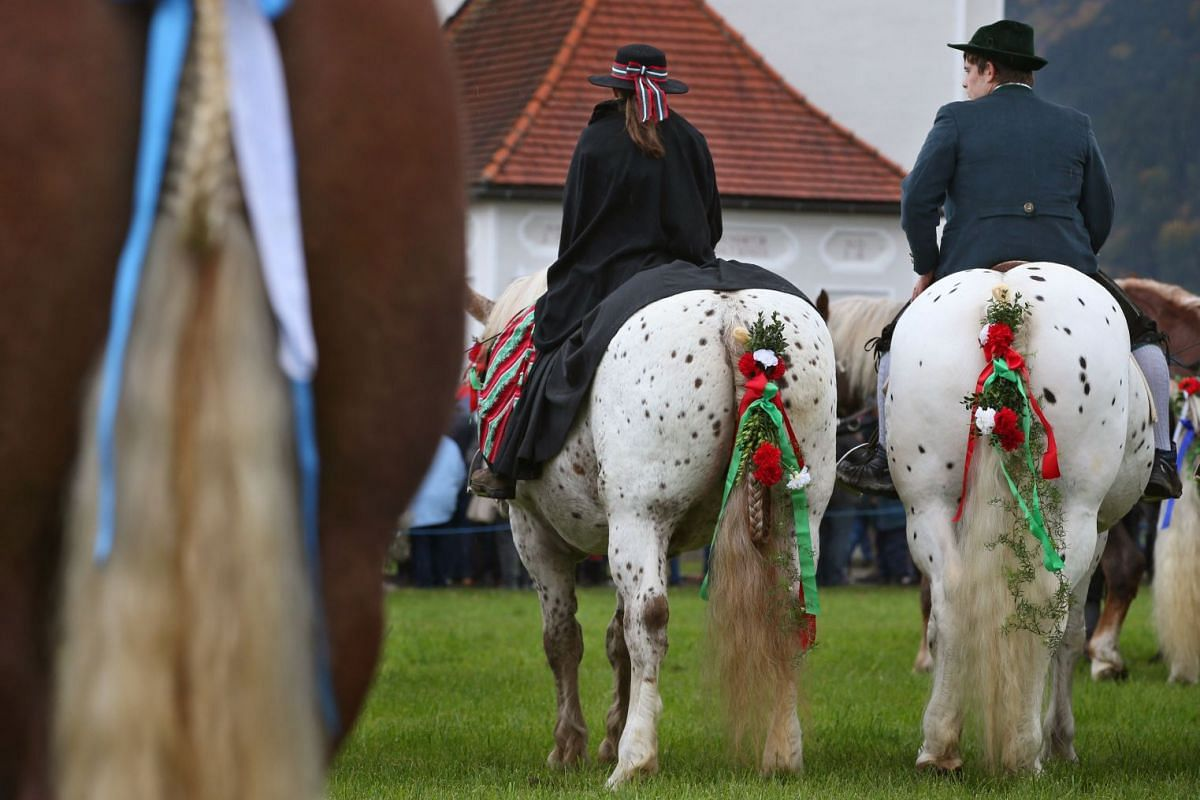 Horses and their owners are blessed during the Sankt Coloman festival in southern Germany, on Oct 8, 2017.  PHOTO: AFP