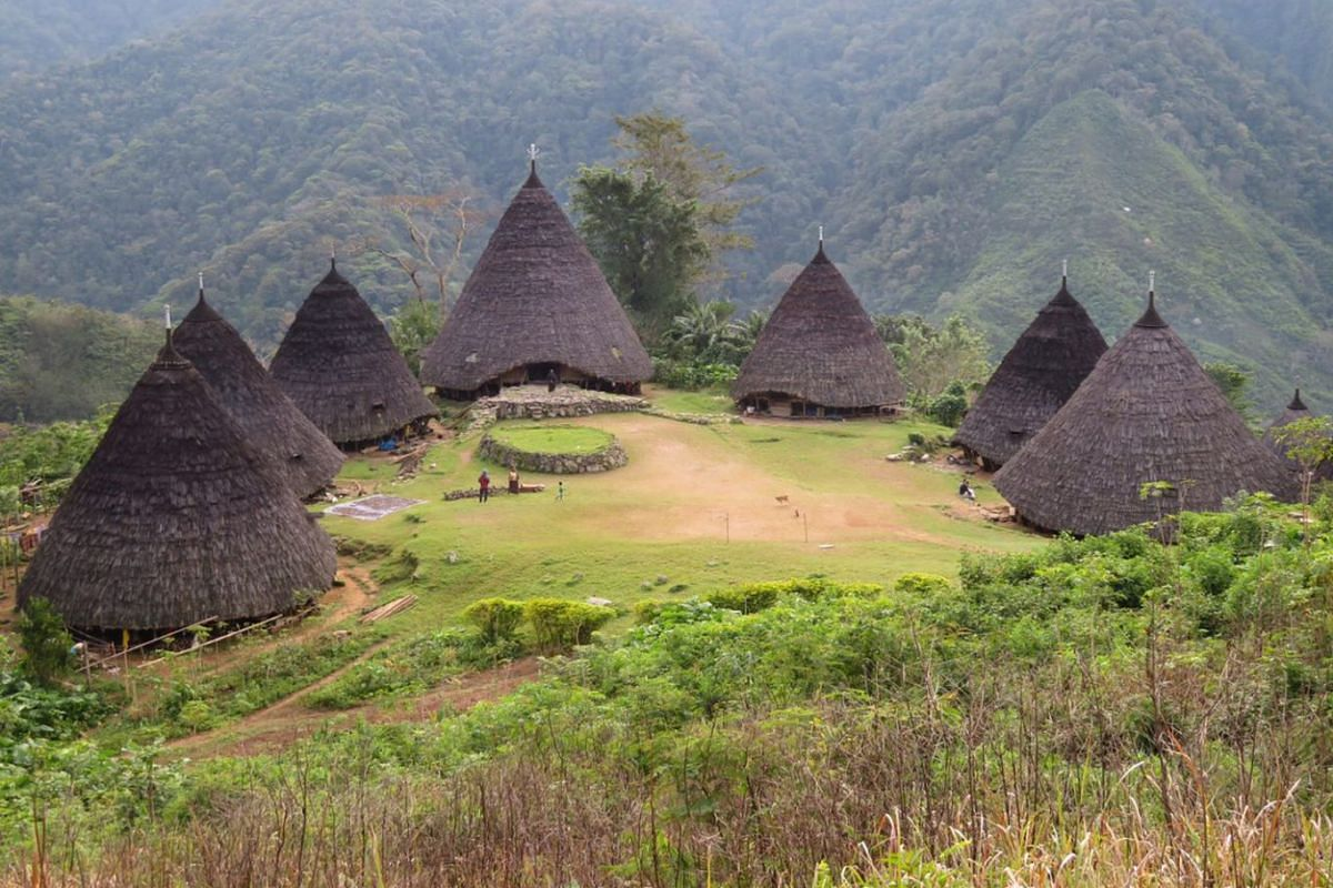 The traditional Mbaru Niang style of housing features tall, brown conical houses raised on stilts.
