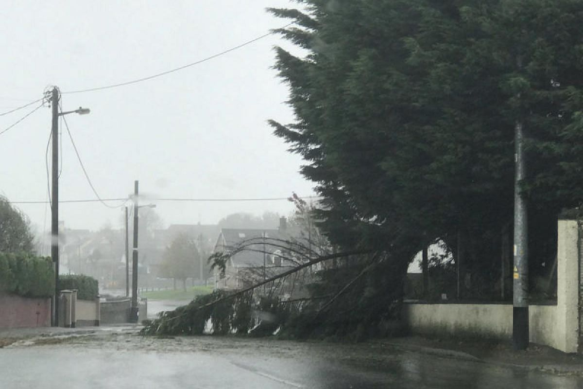 An uprooted tree lying on a road as storm Ophelia hits Cork, Ireland on Oct 16, 2017. This still image was obtained from a social media video.