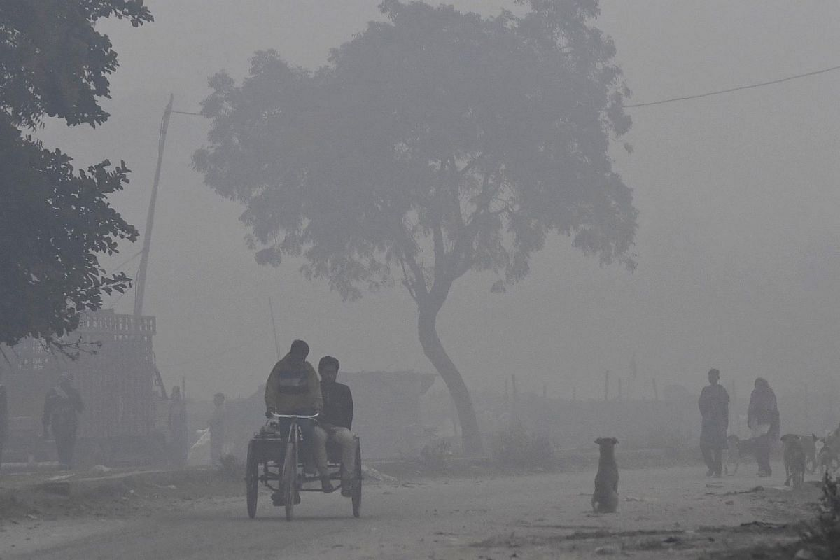 An Indian man rides a tricycle on a smog covered morning on the outskirts of New Delhi.