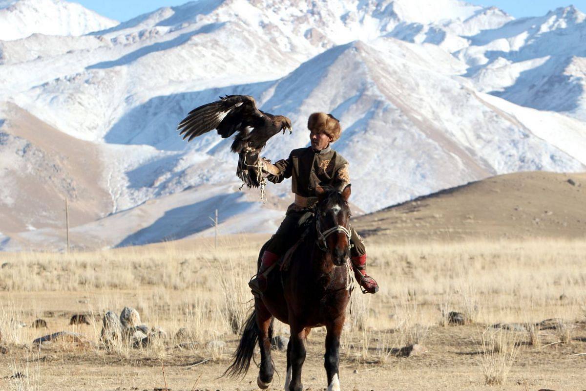 Kyrgyz bird hunter Aytbek Sulaymanbekov carries a golden eagle in the village of Turasuu, Issyk-Kul area (270 km from Bishkek), Kyrgyzstan, November 11, 2017. Aytbek learnt bird hunting from the age of ten. He owns a golden eagle and a young falcon.