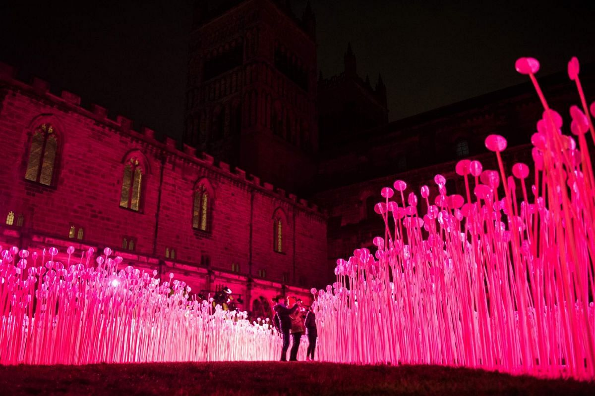 A light art installation entitled 'Entre Les Rangs' is pictured at the Cathedral Cloister as part of Lumiere Durham light festival in Durham, northern England on November 15, 2017. The biennial Lumiere Durham festival brings together international li