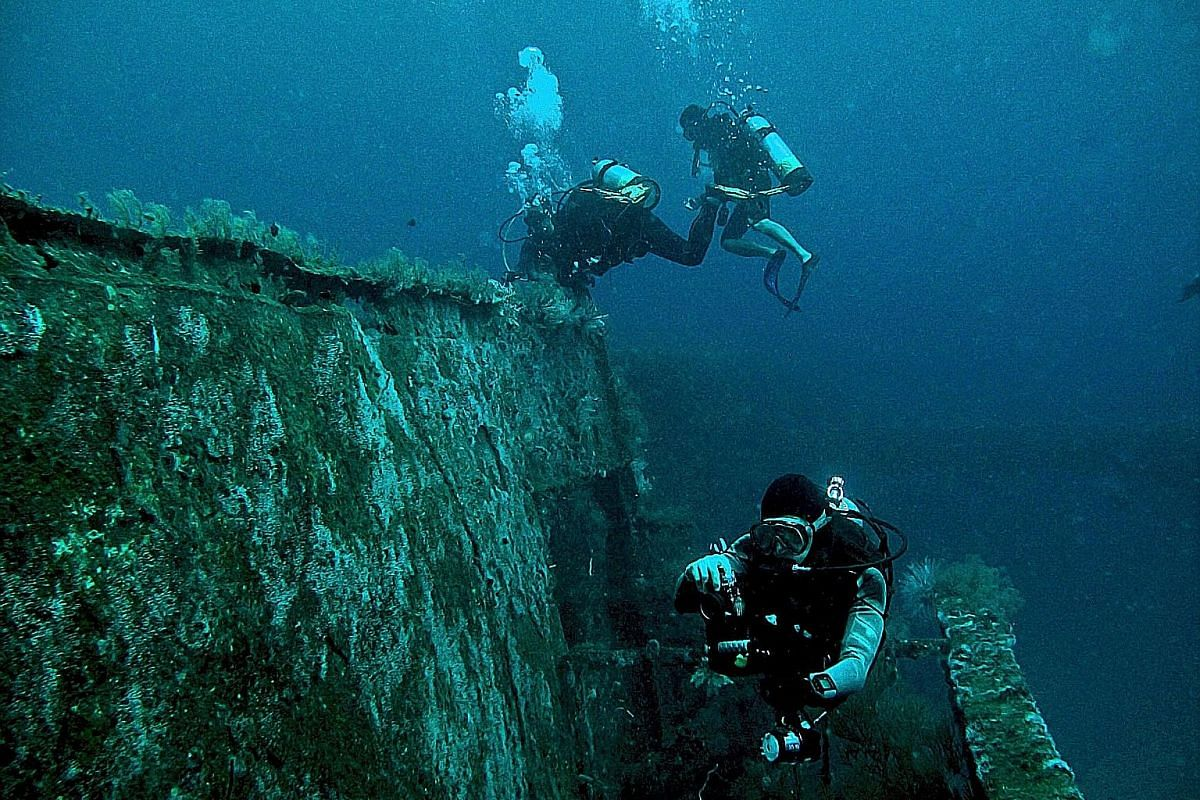 Over two-thirds of Brunei is covered in rainforests. It has over 60 dive sites and 30 shipwrecks.