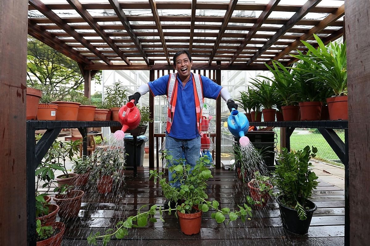 Mr Tan Wai Loon became interested in gardening some 10 years ago. He started out at the APSN Centre for Adults as a general worker but is now an instructor assistant, helping the centre with its horticulture and grass-cutting course.