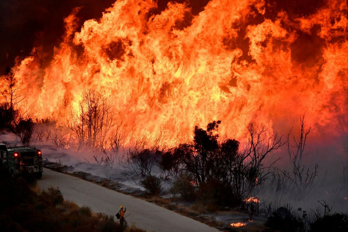 Fire fighters attack the Thomas Fire's north flank with backfires as they continue to fight a massive wildfire north of Los Angeles, near Ojai , California, U.S., Dec 9, 2017
