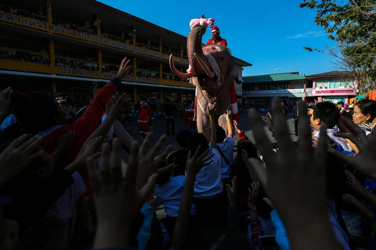 An elephant dressed in a Santa Claus costume distributes a doll to students during the Christmas celebrations at Jirasart school in Ayutthaya, Thailand, on Dec 22, 2017.