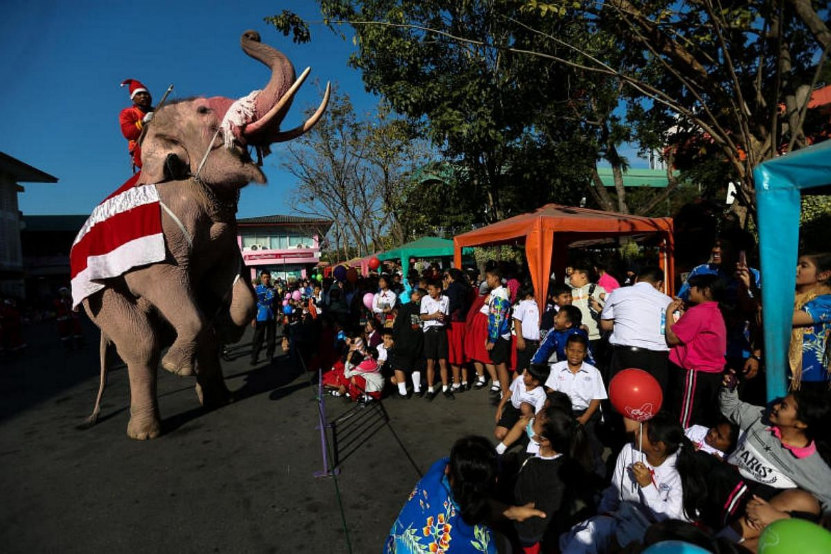 An elephant dressed in a Santa Claus costume performs for students during the Christmas celebrations at Jirasart school in Ayutthaya, Thailand, on Dec 22, 2017.