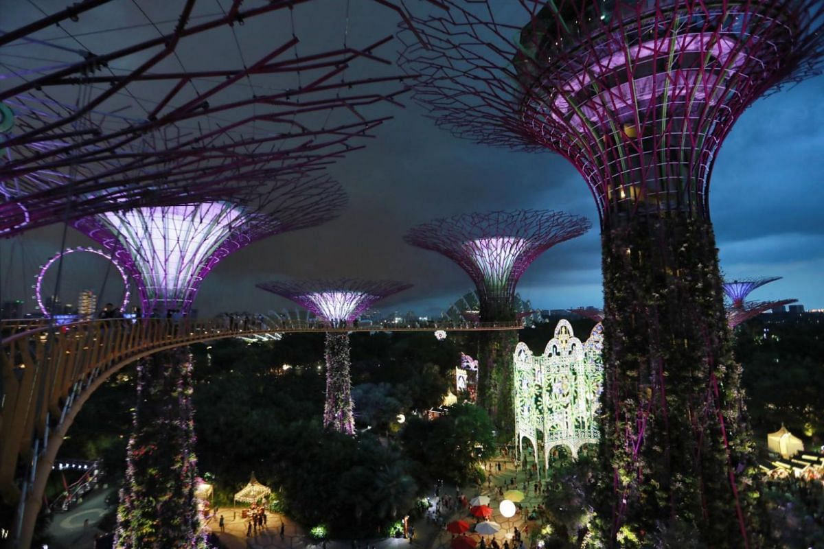 A view of the Supertrees Grove lighted up on Christmas Day at Gardens by the Bay in Singapore.