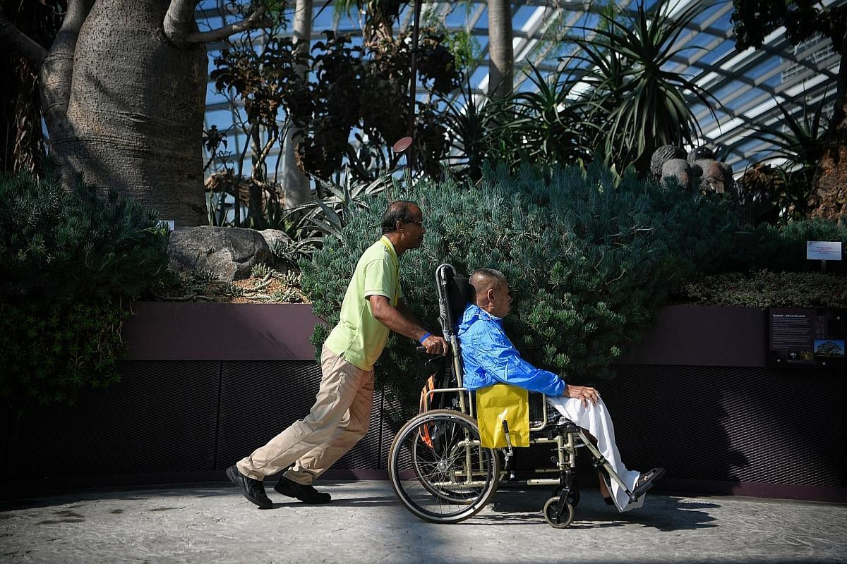 """Mr Randall De'Souza, 51, helps 82-year-old patient Tan Kang Liang get around the Flower Dome at Gardens by the Bay during a weekly outing. Dover Park Hospice's 18 volunteer groups, named after different gemstones, are classified into """"patient-facing"""" and"""
