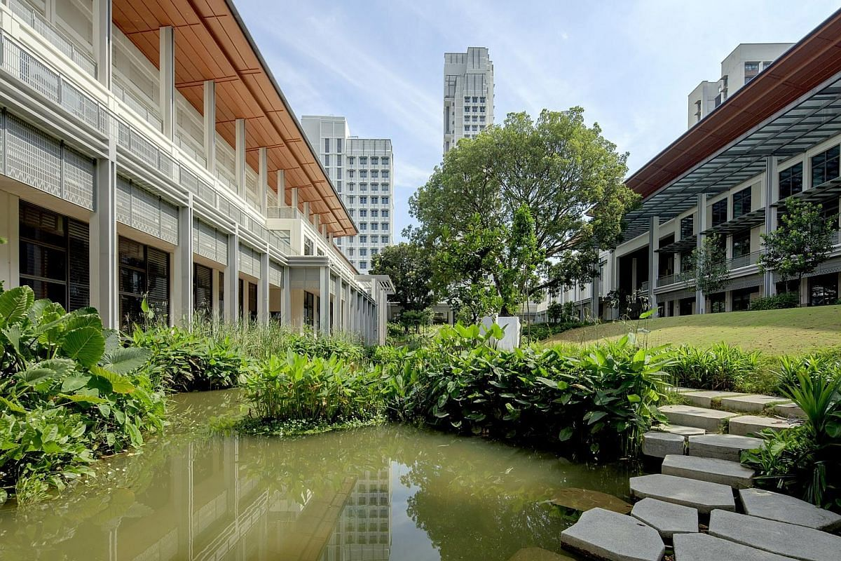 The Caterpillar's Cove (above) won the President's Design Award in 2015, while the Yale-NUS campus landscape (left) was based on the idea of a campus in a garden and a campus of gardens.