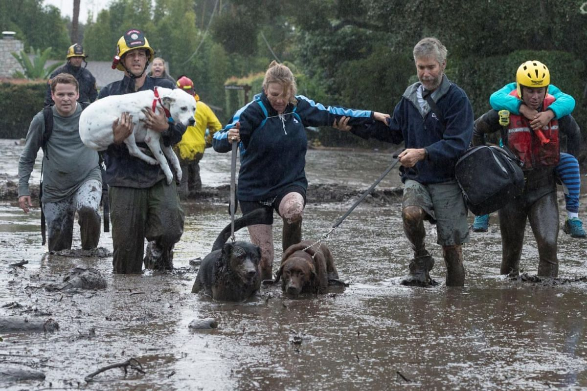 Emergency personnel evacuate local residents and their dogs through flooded waters in Montecito, California.