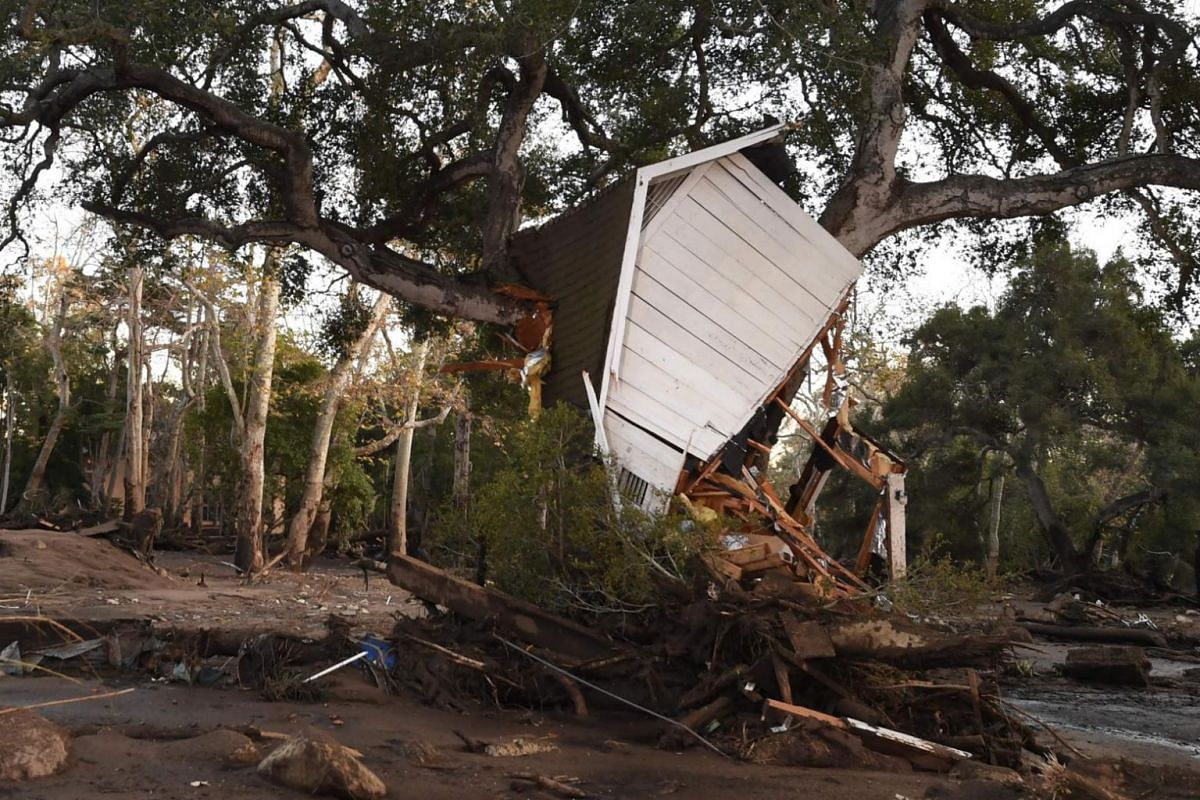 A building uprooted by a massive mudslide is lodged in a tree in Montecito, California.