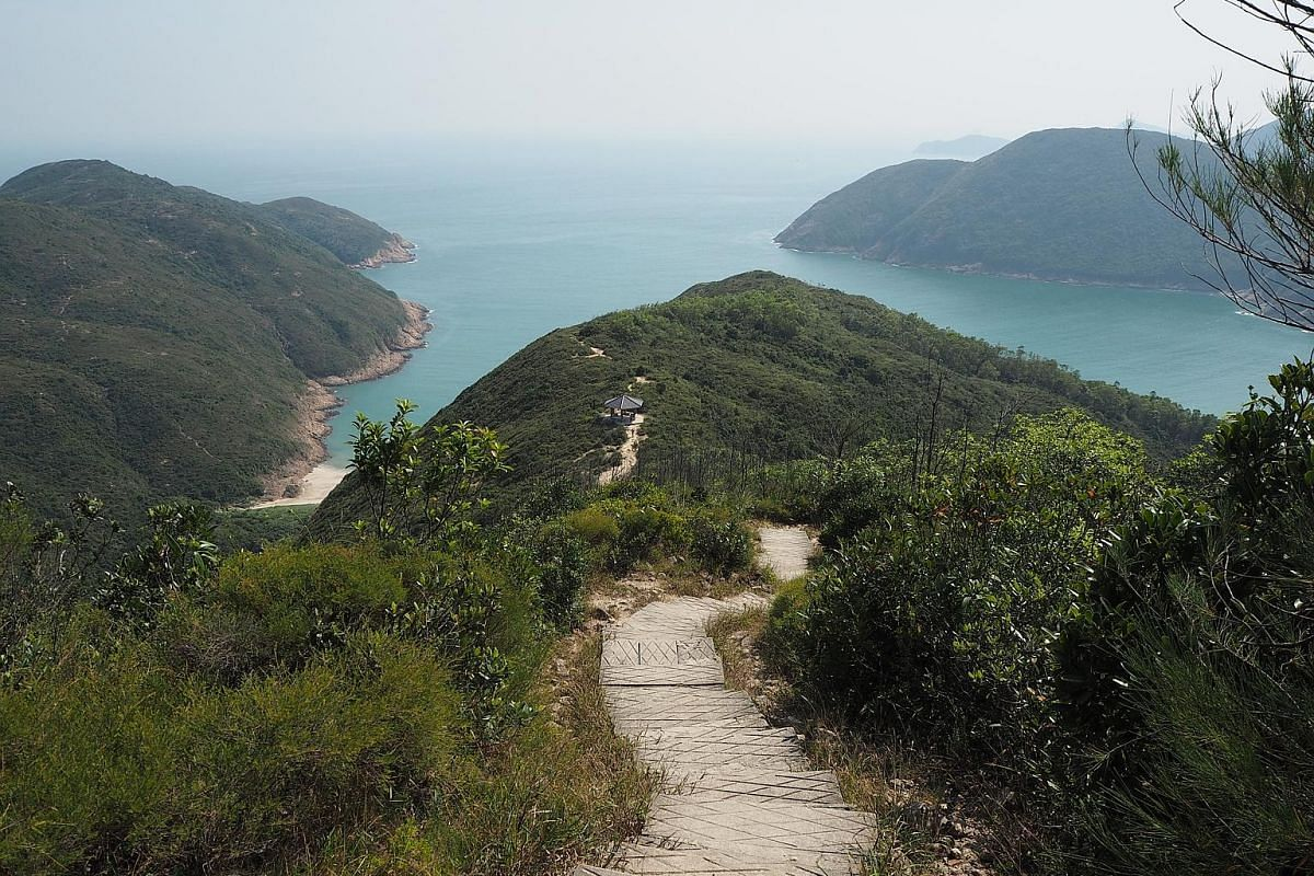 (Right) Rock columns 100m-tall and stacked symmetrically like gargantuan matchsticks are a geological marvel in the Hong Kong Unesco Global Geopark. (Left) Enjoy panoramic views of coves, ridges and uplands carpeted in dense grassy vegetation on the