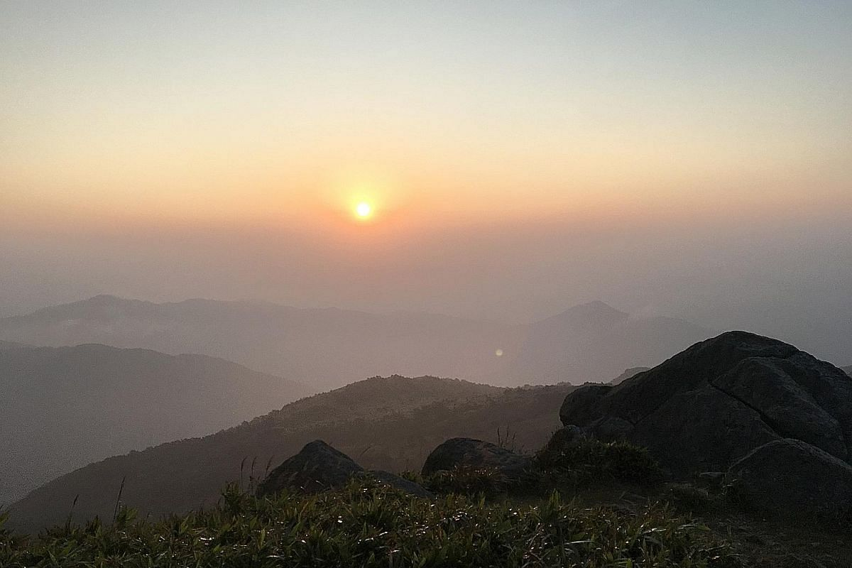 The Tai Mo Shan Sunrise Hike Tour by travel company Tour 3.0 ferries hikers three-quarters up the mountain to catch the sunrise at its peak.
