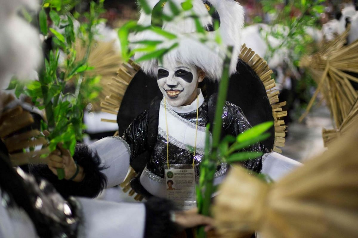 A young reveller of the Imperio Serrano with facepaint performing at the Rio Carnival.