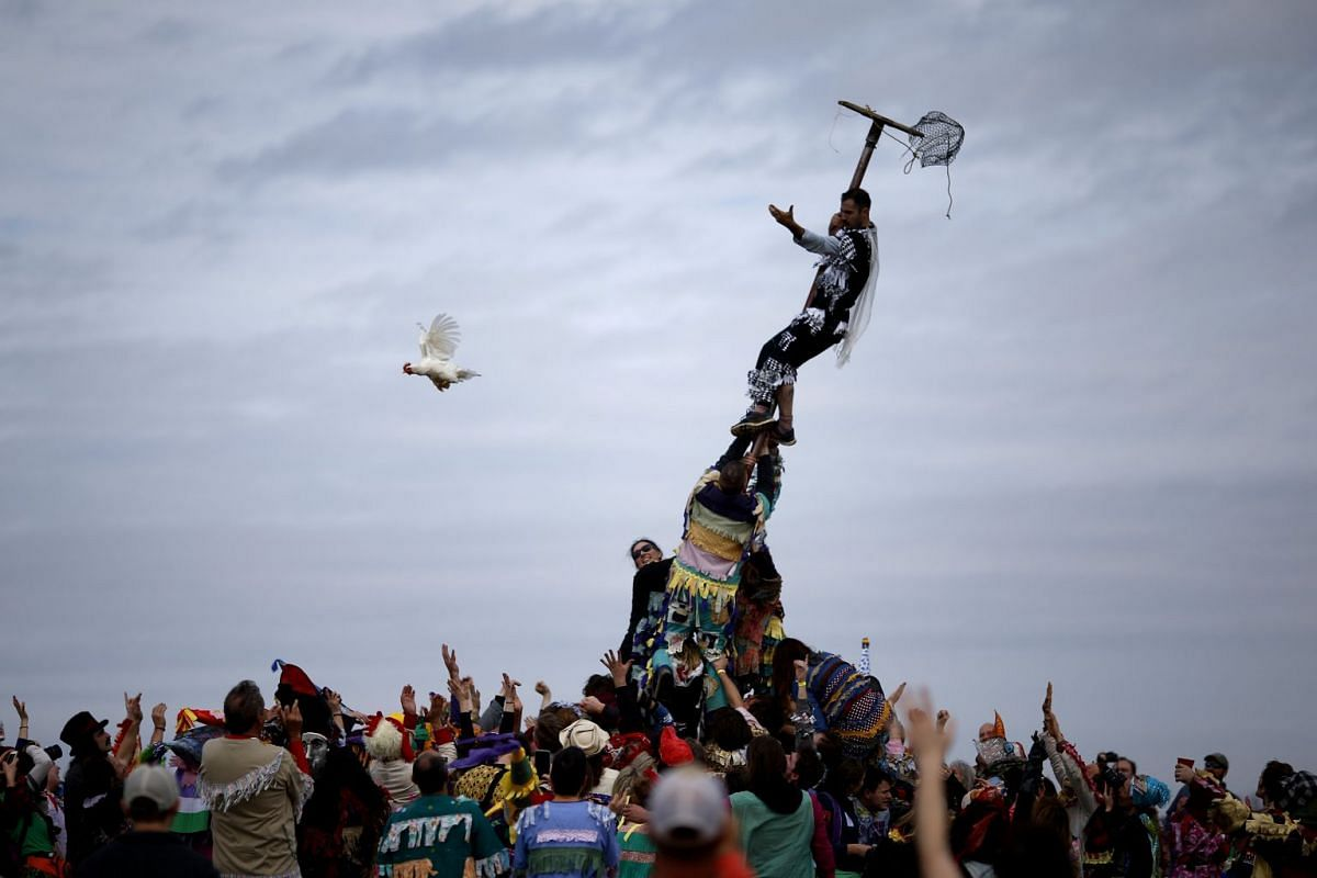 A reveller releases a chicken from a cage after climbing a greased pole during the Faquetaique Courir de Mardi Gras celebration in Eunice, Louisiana, U.S., February 13, 2018. PHOTO: REUTERS