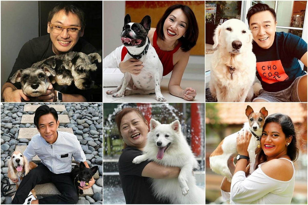 (Clockwise from top left) Film-maker Chai Yee Wei with his three mini schnauzers, Maddy Barber with her French bulldog, Guo Liang and his golden retriever, comedienne Preetipls with her Jack Russell terrier, radio DJ Yip Limei and her Japanese spitz
