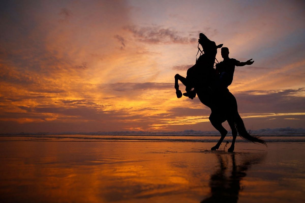 A Palestinian man rides a rearing horse at the sunset on the beach in Gaza City, on Feb 19, 2018.