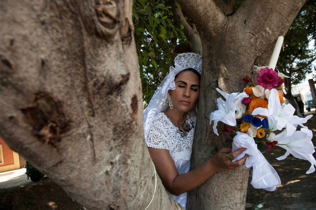 A woman dressed as a bride hugs a tree during an event to raise awareness about trees and to stop illegal logging in San Jacinto Amilpas, Mexico, on Feb 25, 2018.