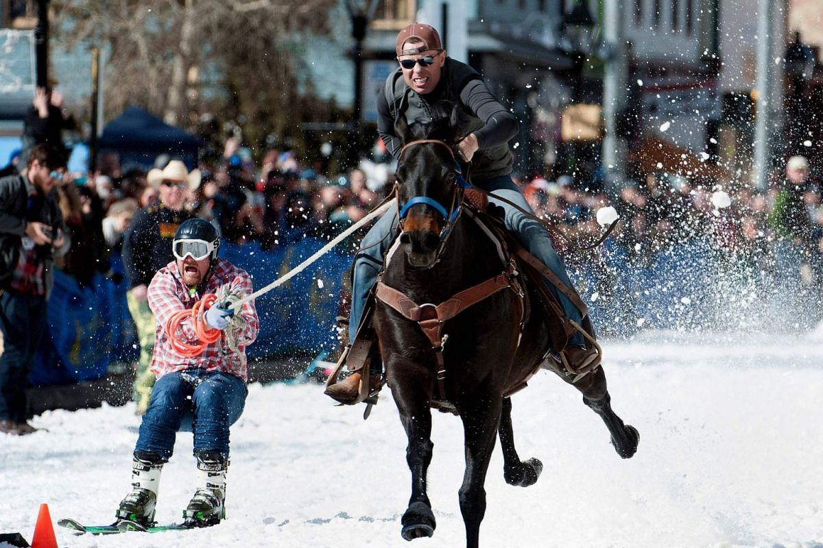 Rider Eric Mikkelson and skier Jason Dahl race to the finish line during the 70th annual Leadville Ski Joring weekend competition on March 3, 2018 in Leadville, Colorado. PHOTO: AFP