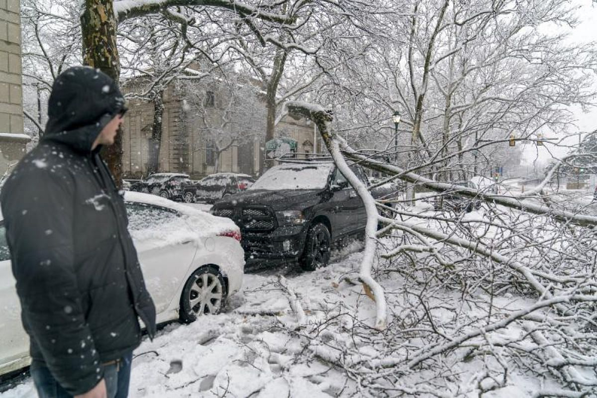 A man looks at a branch that fell from heavy snow and landed on his friend's truck in downtown Philadelphia, Pennsylvania on March 7, 2018.