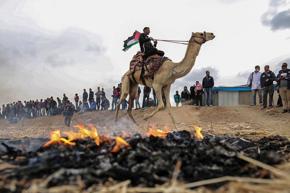 A Palestinian man waves his national flag as he attends a camel race near the border with Israel, east of Khan Yunis in the southern Gaza Strip, on April 3, 2018.