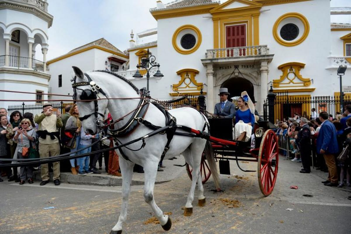 A horse pulls a buggy during the XXXIII Enganches (Horse-drawn carriages) exhibition at the Real Maestranza bullring in Sevilla on April 15, 2018.