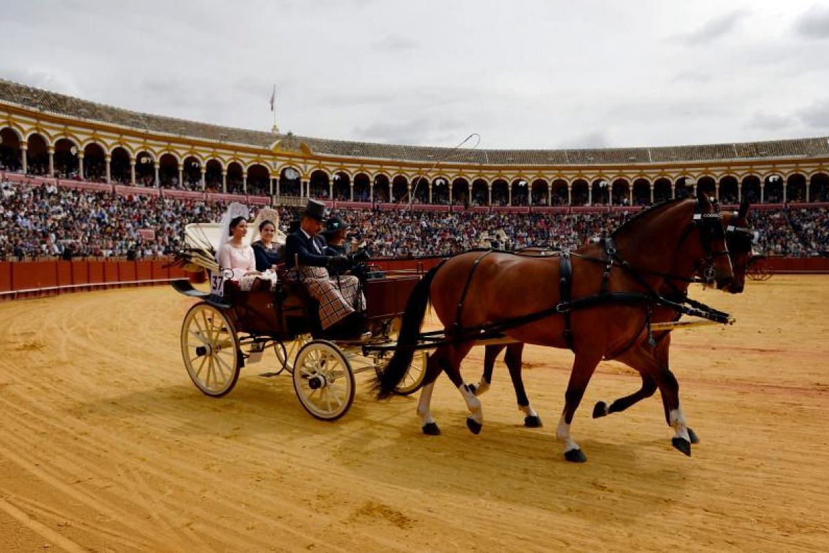 A horse-drawn carriage participates in the XXXIII Enganches (Horse-drawn carriages) exhibition at the Real Maestranza bullring in Sevilla on April 15, 2018.