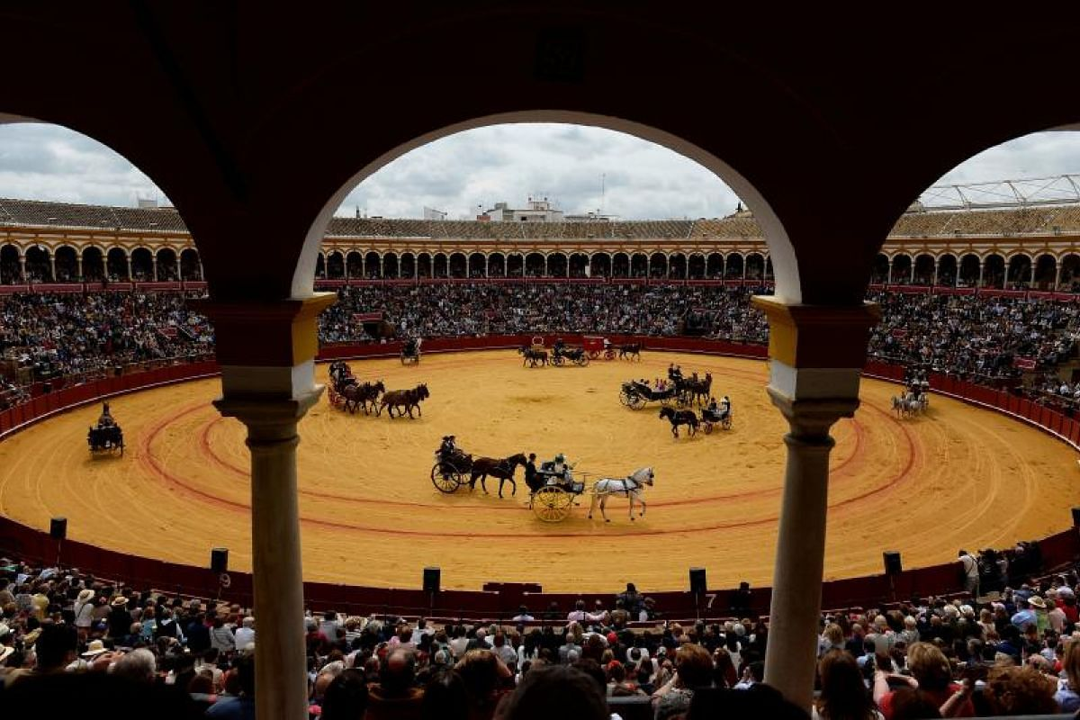 Horse-drawn carriages participate in the XXXIII Enganches (Horse-drawn carriages) exhibition at the Real Maestranza bullring in Sevilla on April 15, 2018.
