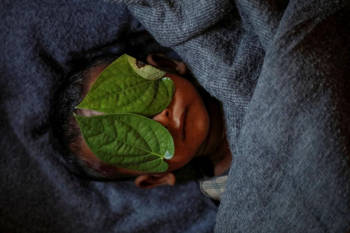 Betel leaves cover the face of 11-month-old Rohingya refugee Abdul Aziz whose wrapped body lay in his family shelter after he died battling high fever and severe cough at the Balukhali refugee camp near Cox's Bazar, Bangladesh, on Dec 4, 2017.