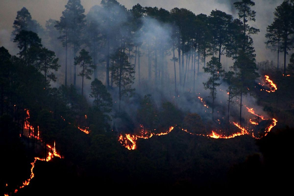 View of a fire forest in La Montanita, in the surroundings of Tegucigalpa, Honduras on April 25, 2018. PHOTO: AFP