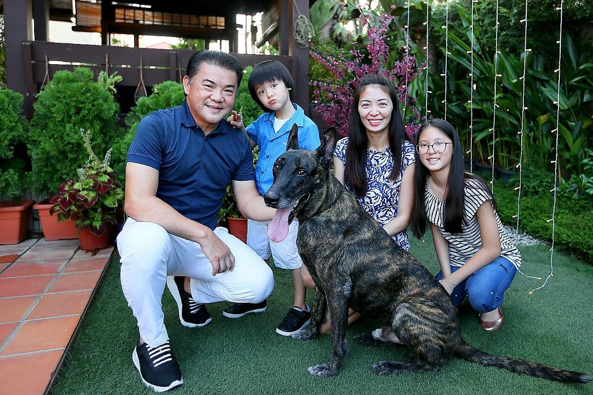 Ms Philishere Ng with her rabbits (from left) Koala, seven, Bobo, eight, and Felice, three. Above: Mr Ringo Chong, his wife Florence Ho and their children Renee and Rainier with their newly adopted retired police dog, Thomas, who is eight years old.