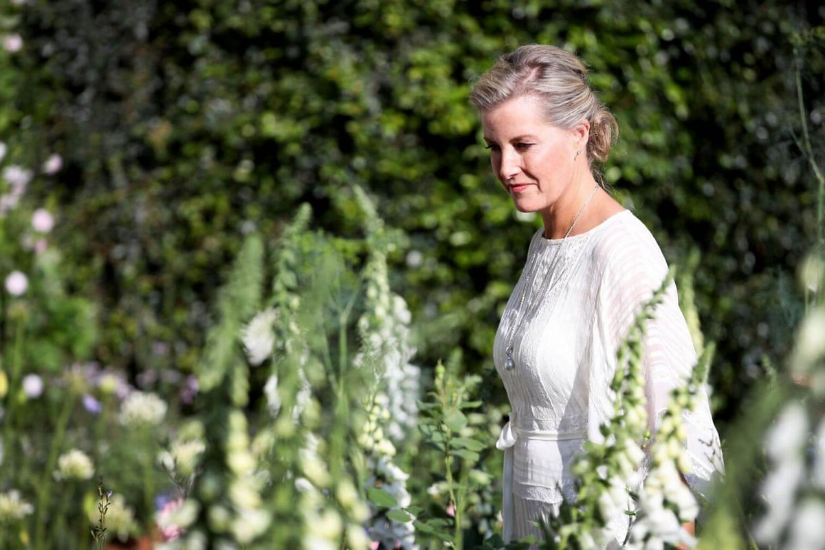 Britain's Sophie, Countess of Wessex, looks at floral displays as she visits the 2018 Chelsea Flower Show in London, on May 21, 2018.