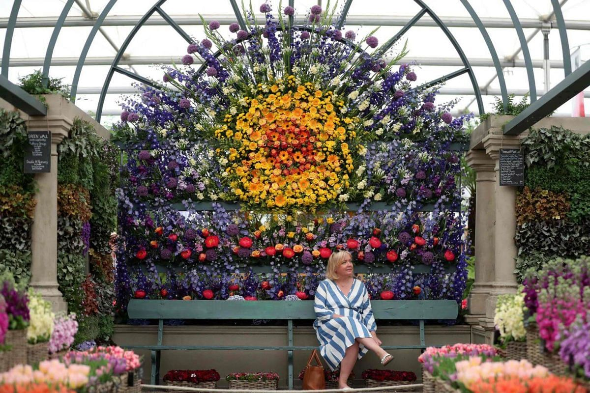 A visitor sits beneath a display of flowers at the floral market at the 2018 Chelsea Flower Show on May 21, 2018.