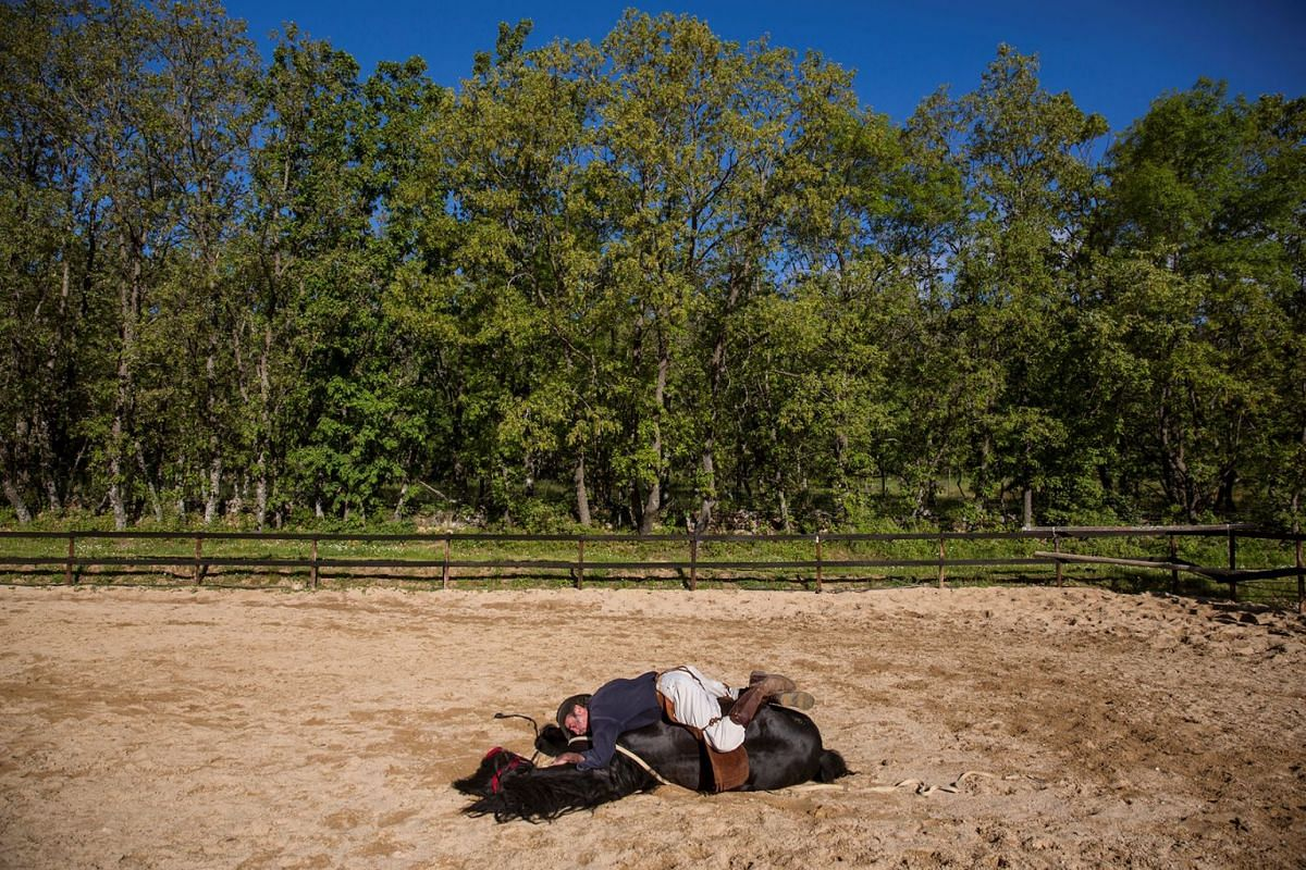 Fernando Noailles, emotional therapist, lays on top of his horse named Madrid in Guadalix de la Sierra, outside Madrid, Spain, May 31, 2016. Noailles uses his animals to help people suffering from stress and anxiety.