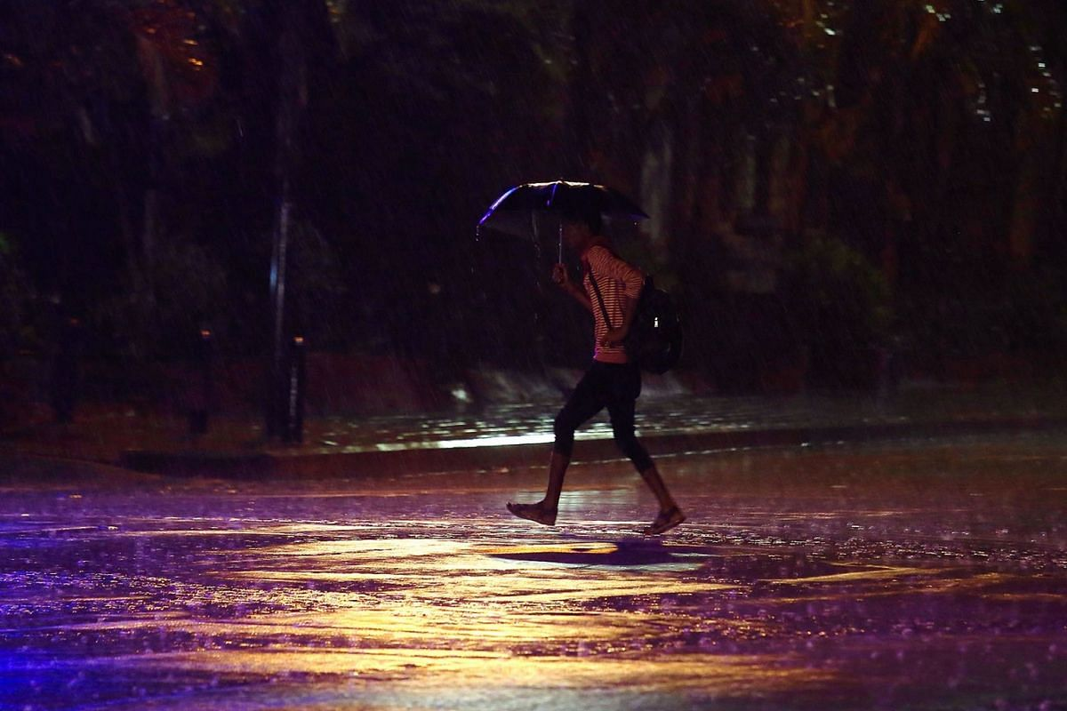 An Indian man holds an umbrella and walks in the heavy rain, Bangalore, India, May 30 2018. India is expecting normal monsoon rainfall in the month of May, auguring well for agricultural output, the national weather office said. Photo: EPA-EFE