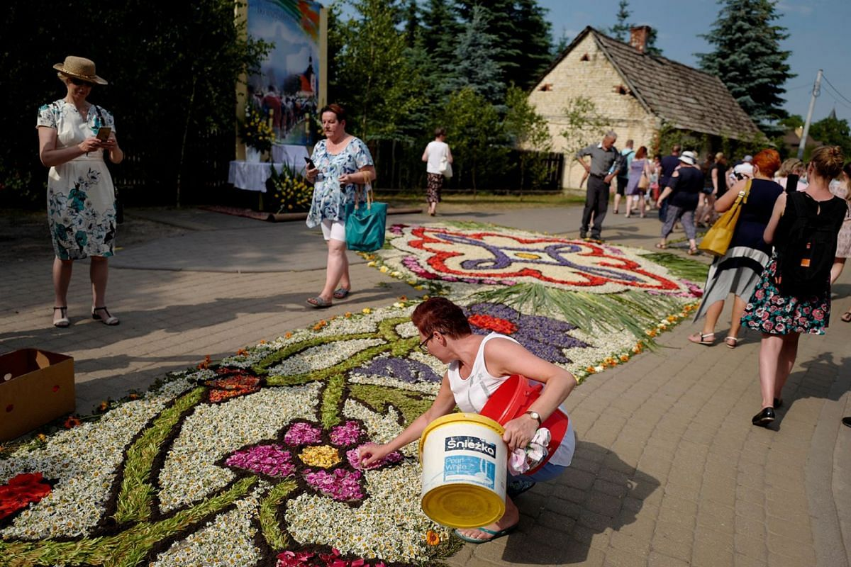 A parishioner arranges a carpet of flowers as a local tradition during Corpus Christi celebrations in Spycimierz, Poland May 31, 2018.Photo: REUTERS