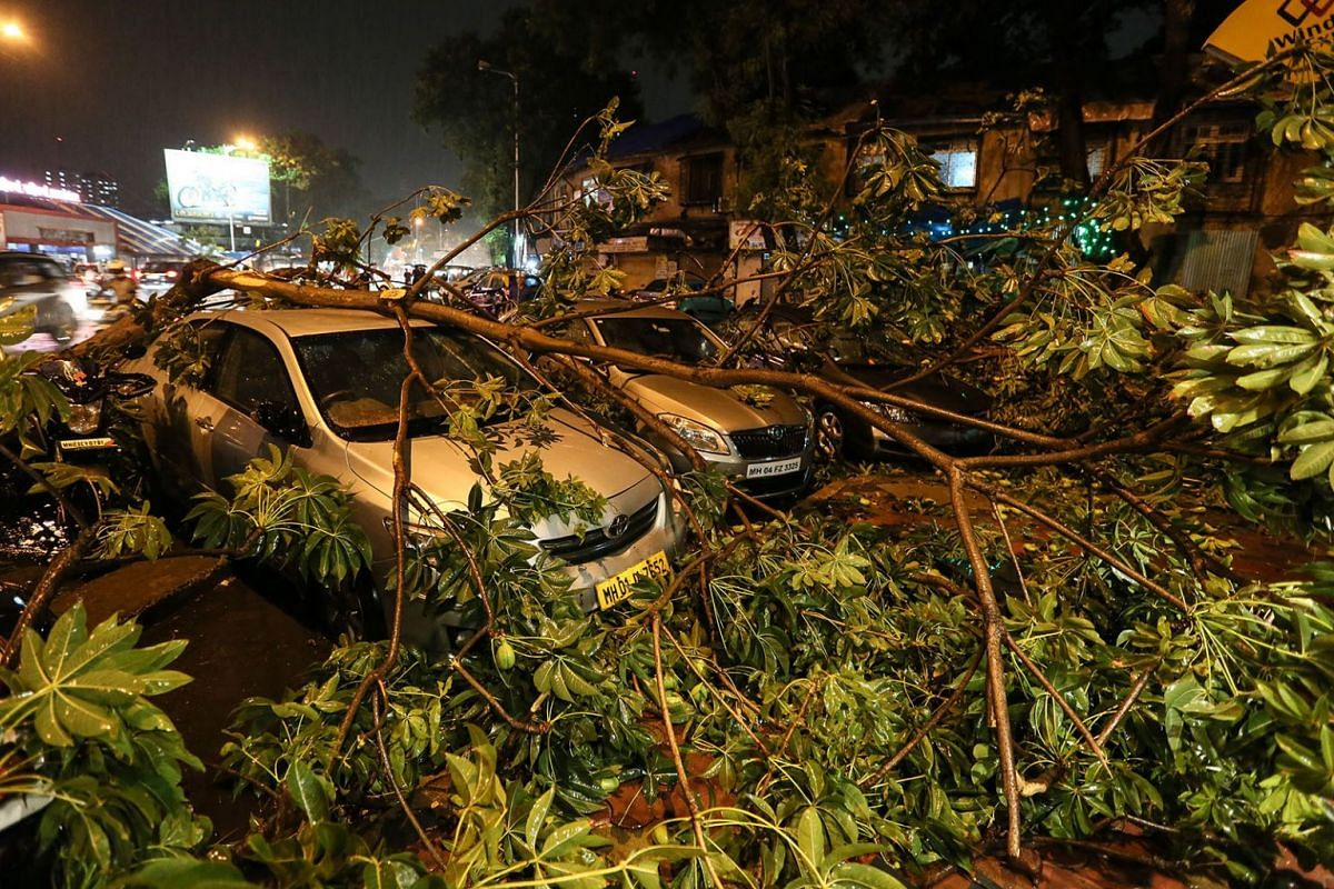 A tree collapsed on a car following a heavy downpour in Mumbai, India,  June 4, 2018. PHOTO: EPA-EFE